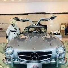 세계자동차제주박물관 여행 사진