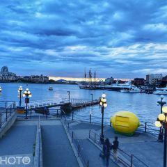 Victoria Pier User Photo