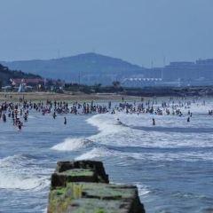 Jungmun Beach User Photo