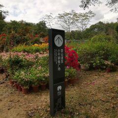 Lianhua Mountain Park User Photo