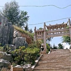 西寧南山公園用戶圖片