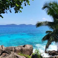 La Digue Island User Photo