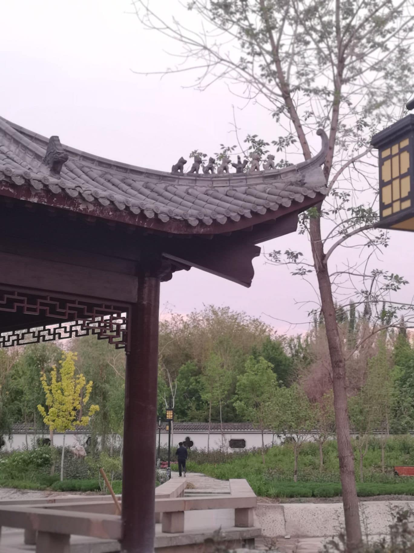 Urumqi Botanical Garden Travel Guidebook Must Visit Attractions In Urumqi Urumqi Botanical Garden Nearby Recommendation Trip Com