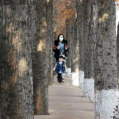 Phoenix Park User Photo