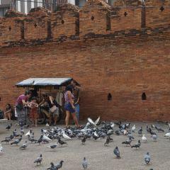 치앙마이 게이트 여행 사진