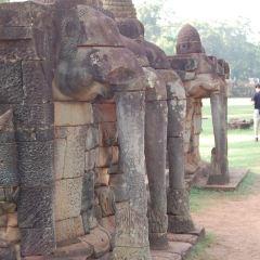 코끼리 테라스 여행 사진