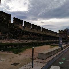 阿維尼翁城牆用戶圖片