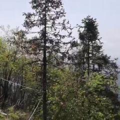 Shizhu Mountain User Photo