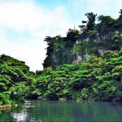 천제연 폭포 여행 사진