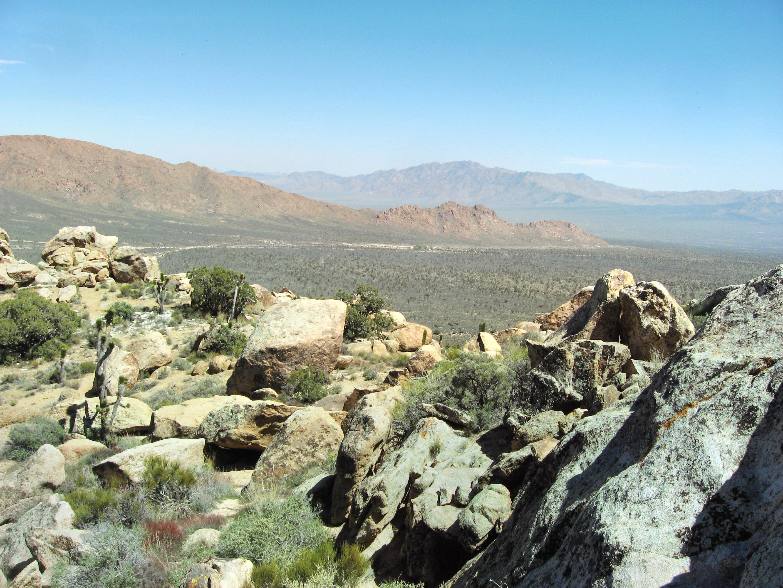 Mojave National Preserve Conservancy