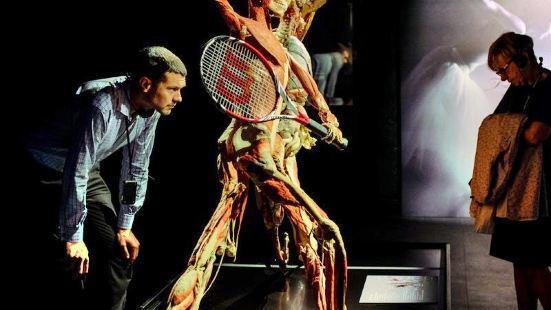 倫敦人體世界展覽