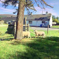 New Lanark User Photo