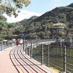 춘천 명동거리 여행 사진