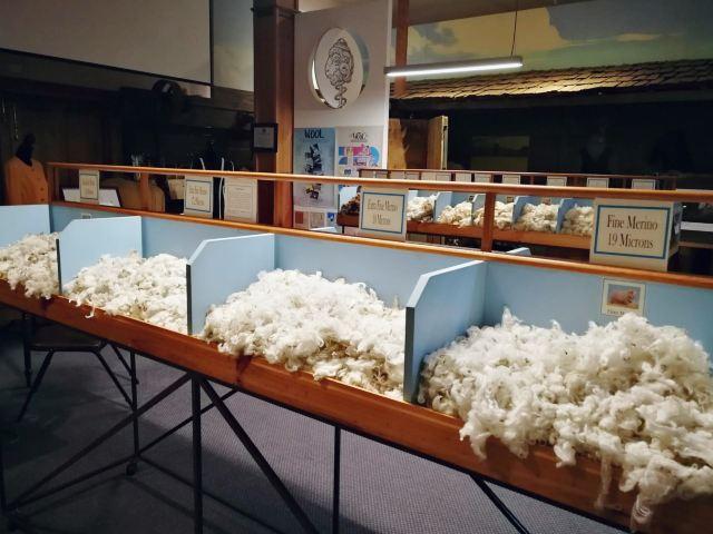 塔斯馬尼亞羊毛中心