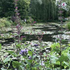 普瑞本德花園用戶圖片
