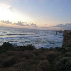 Great Ocean Road Wildlife Park User Photo