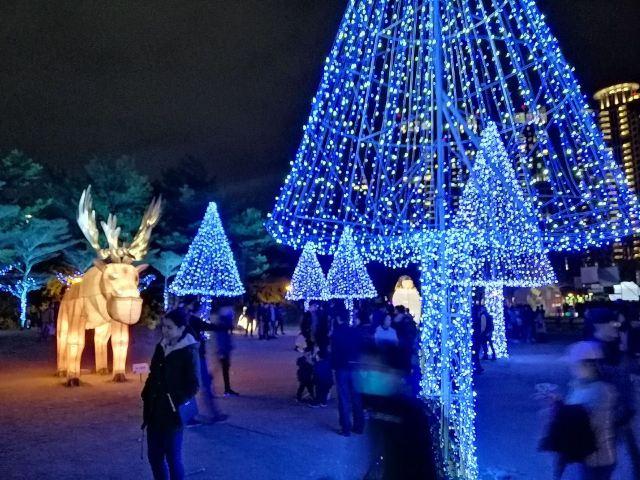 Wenxin Forest Park