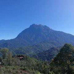 Kinabalu National Park User Photo