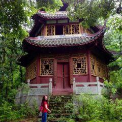 자룡묘 여행 사진