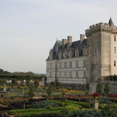 圖爾城堡用戶圖片