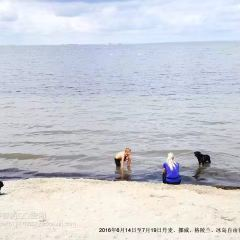 厄勒海峽用戶圖片
