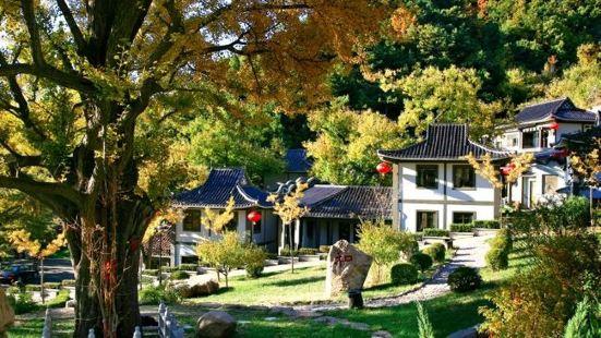 禪林寺風景區