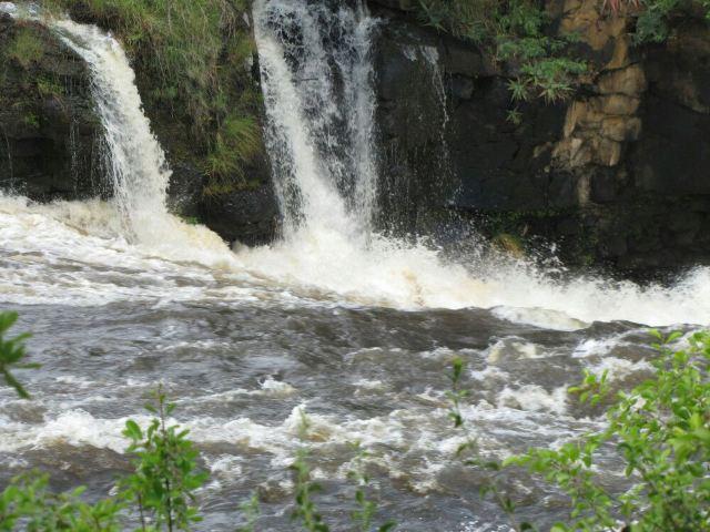 Chirinda Forest Reserve