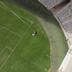 摩西·馬布海達體育場用戶圖片