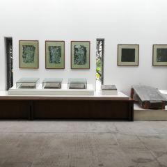 Tiantai Museum User Photo