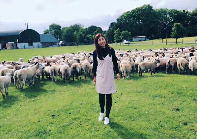 Causey Farm