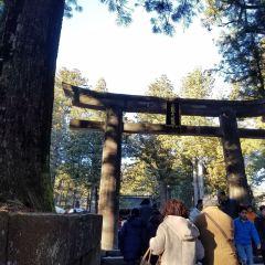 닛코 후타라산 신사 여행 사진
