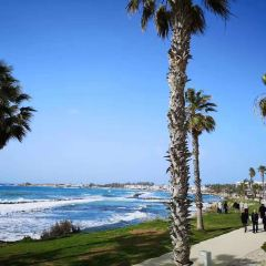Paphos Municipal Beach User Photo