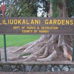 莉莉烏卡拉尼公園用戶圖片