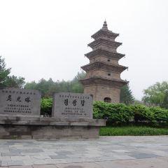 Lingguang Tower User Photo