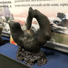 Shanghai Youlong Stone Culture Museum User Photo