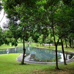 센툴 공원 여행 사진