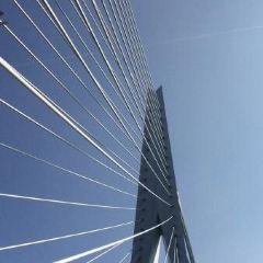伊拉斯謨斯大橋用戶圖片