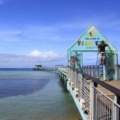 魚眼海洋公園張用戶圖片