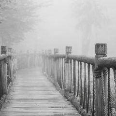 爐嶴村用戶圖片