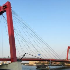 威廉姆斯大橋用戶圖片