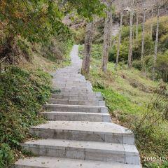 首陽山景區用戶圖片