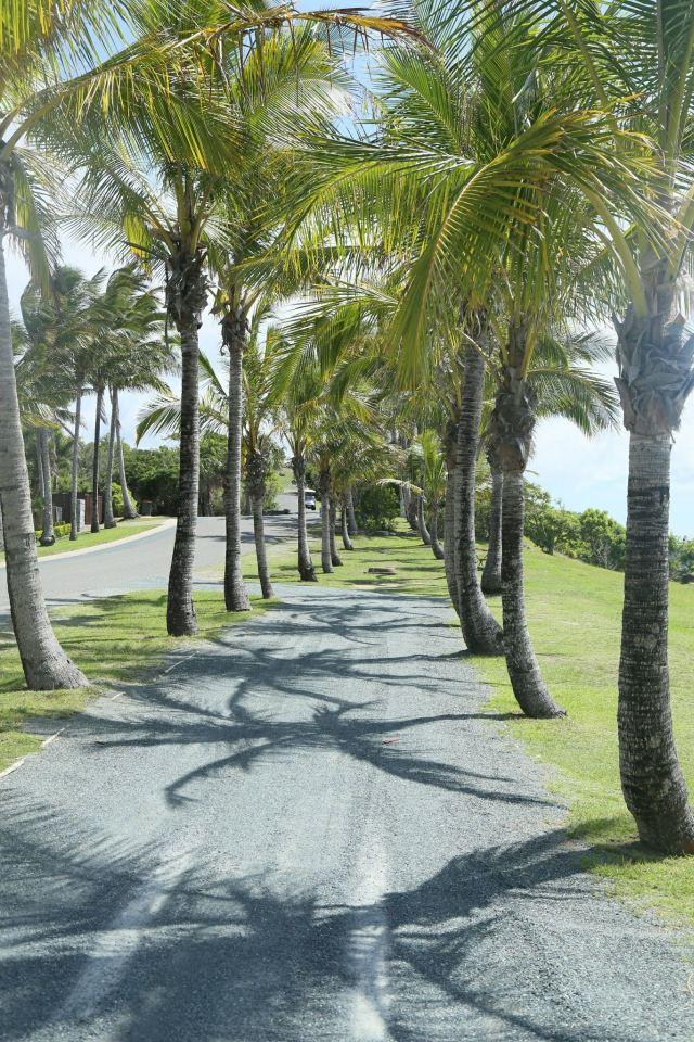漢密爾頓島