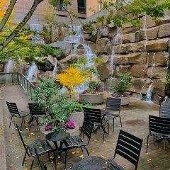 美國西雅圖瀑布花園公園用戶圖片