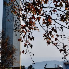 Changsha TV Tower User Photo