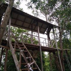 烏魯淡武廊國家公園張用戶圖片