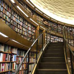 斯德哥爾摩公共圖書館用戶圖片