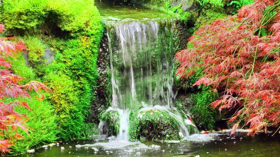 美國西雅圖瀑布花園公園