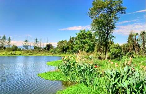 Yangma Wetland Park