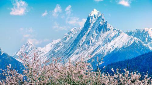Bomi Peach Blossom Valley