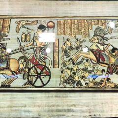 エジプトパピルス博物館のユーザー投稿写真
